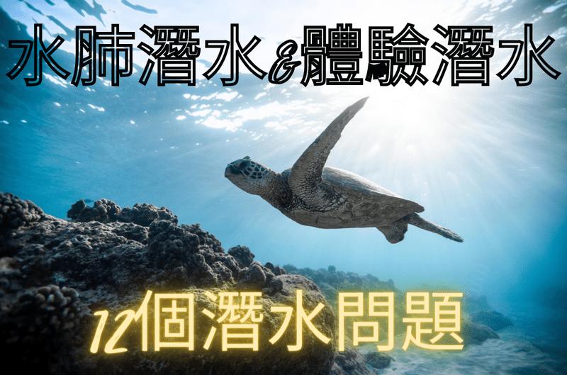 水肺潛水遇到海龜
